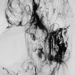 Stampa d'arte su carta per incisioni. Anno di produzione: 2012. Tecnica: Litografia su pietra. Dimensioni: 350mm x 500mm